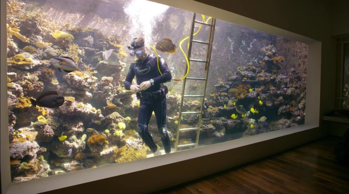 Casas alucinantes acuario en el salón