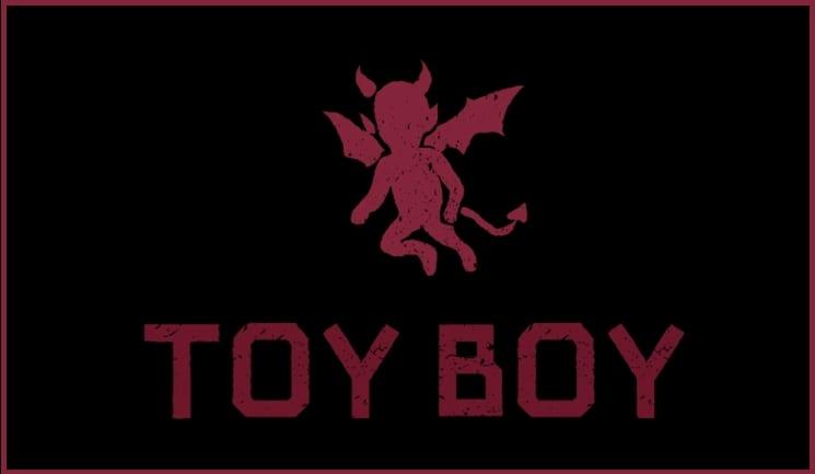 Serie Toy Boy