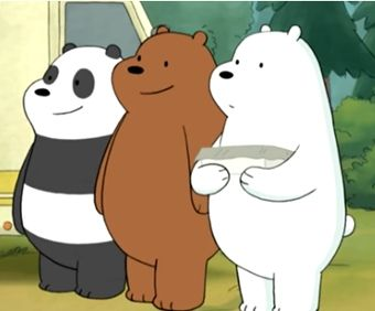 somos osos para test