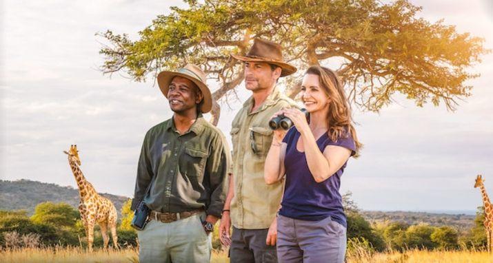 Safari por Navidad