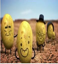 Los Patata