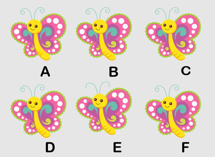 Mariposas hay 2 iguales